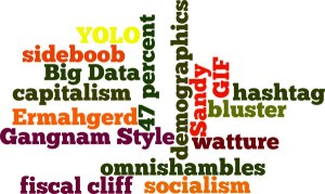 OUPblog's 2012 words of the year